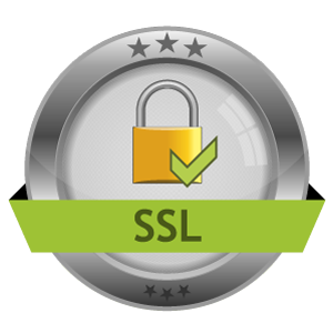 ssl-encryption-icon-4 (1)